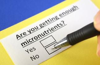 A Closer Look into Micronutrient Deficiencies