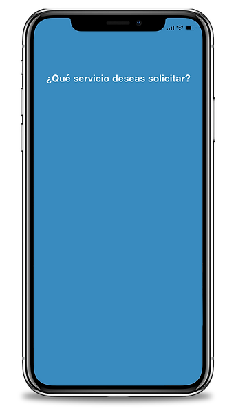 App-capture-template.png