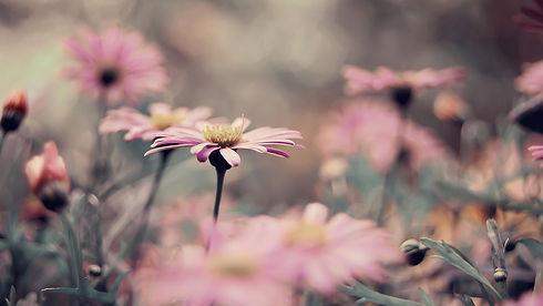 vintage-flowers-3.jpg
