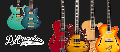 all in one guitar los angeles d'angelico shop store