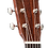 Thumbnail: Martin OM-21 Acoustic
