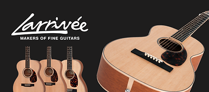 all in one guitar los angeles larrivee shop store