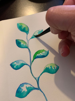 watercolor 1.jpeg
