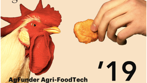 AgFunder Agri-FoodTech Investing Report - 2019