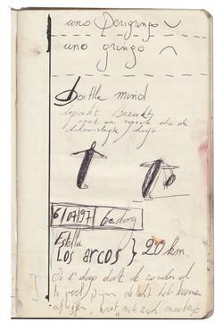 Dagboek 'op weg naar Santiago