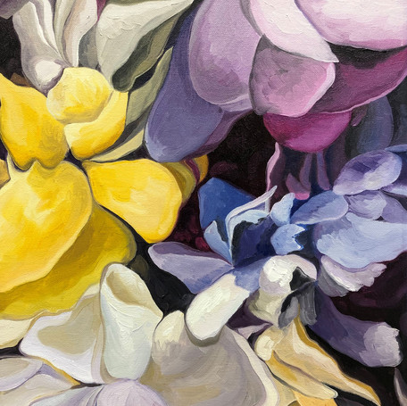 Albany Center Gallery Annual Members Show 2019