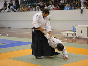 Paso de Grado de Aikido