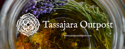 Header Herbal Infusion website photo.png