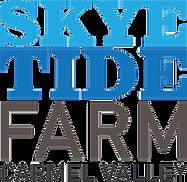 Skye Tide Logo (Large)_edited.png
