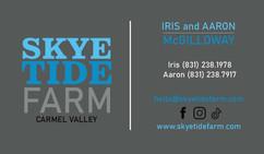 Skye Tide Biz Card Print Ready.jpg