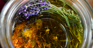 Herbal Infusion website photo.tif