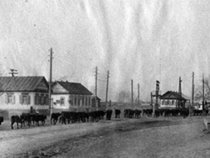 Истинно малая Родина. Как в Оренбуржье появлялись села и деревни?