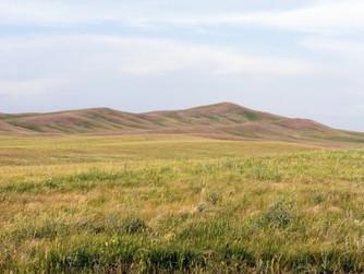 Ссыльные, сходцы и новокрещеные. Как заселялись оренбургские степи.