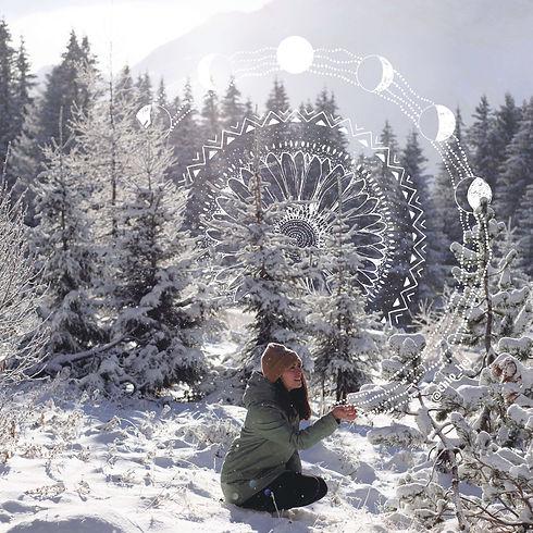 2021-seed of wintersml.jpg