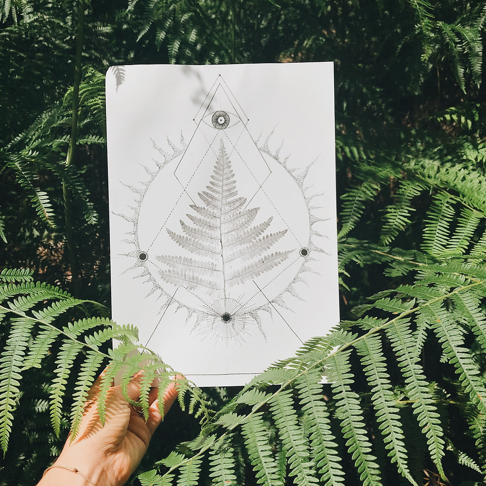 fern fougère forest drawing sacred geometry