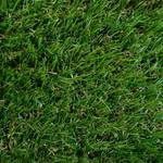 GRASS SHAG VERT