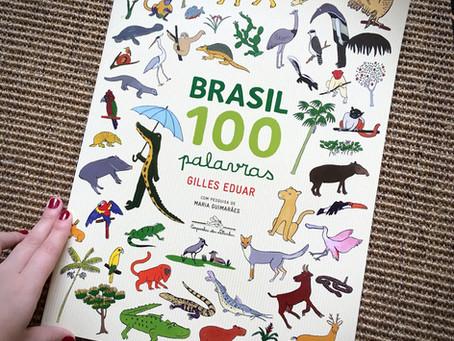 O Brasil de Gilles Eduar