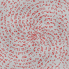Reflections on a Prime Number