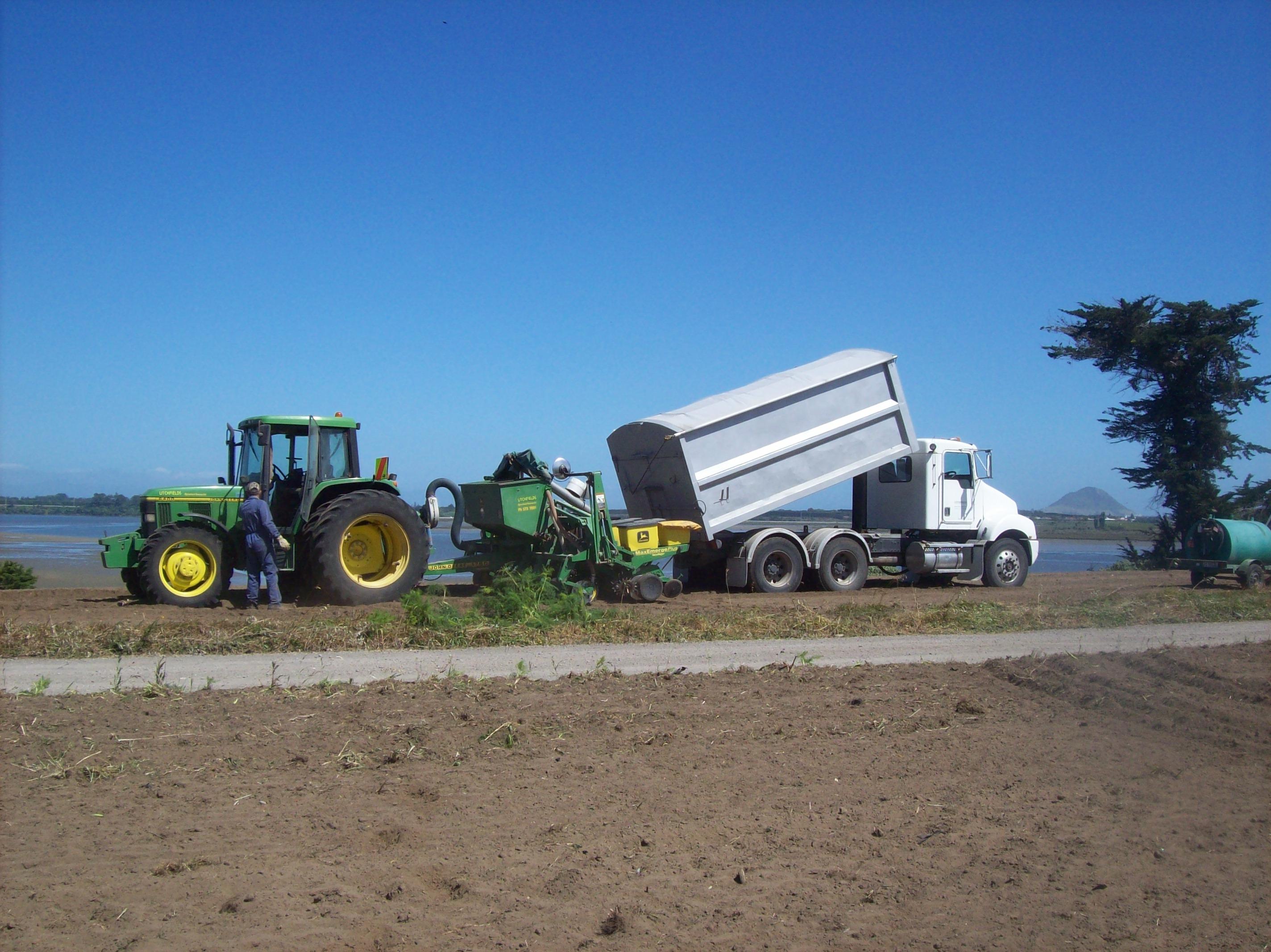 Planting (maize)