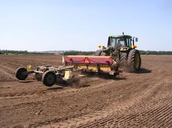 Roller seeding