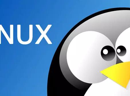Como limpiar tu sistema Linux