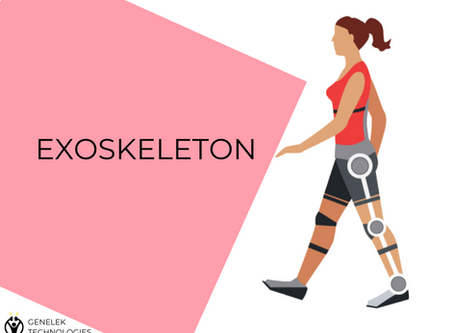 What are exoskeletons?