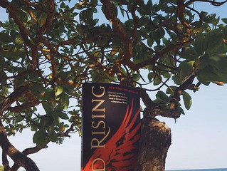 📑 Review: Red Rising by Pierce Brown