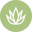 aloe-icon.png