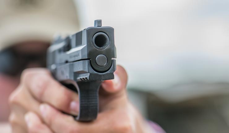 Public Handgun Level 4