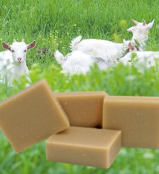 savon au lait de chèvre frais bio