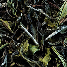 Pai Mu Tan (White Tea)