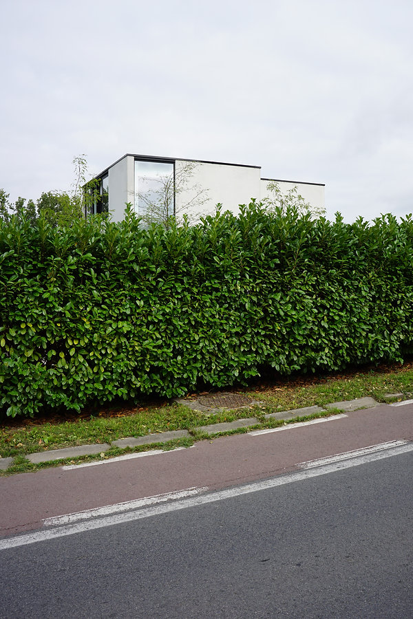 architect Milos Van den Berge modern1.jp