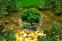 environmental-protection-326923_640 (1).