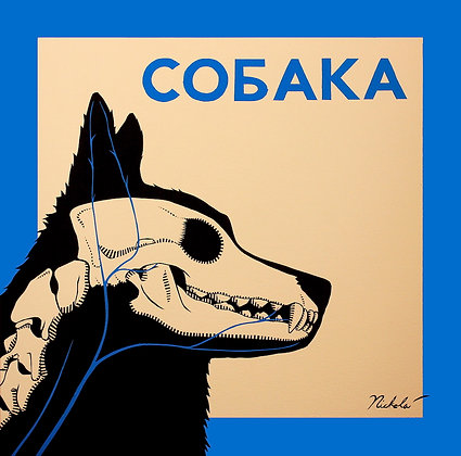 Cobaka