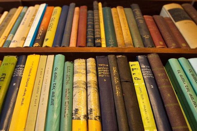 Yiddish Books on shelves recsue IMG_9312