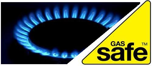 Gas Safe Flame.JPG