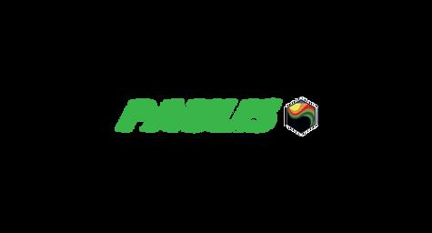 paulis.png