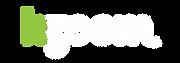 Kzoom Web Logo-06.png