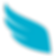 Durham Insurance Corp Logo (2).png