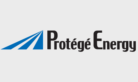 Protege_parnter-page
