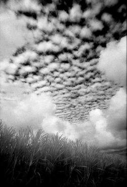 Clouds #13