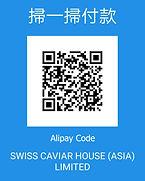 Alipay code.jfif