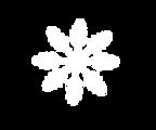 Large-snowflake-asset1.png