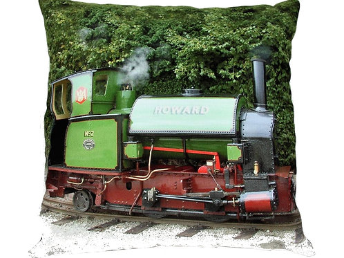 Howard Cushion