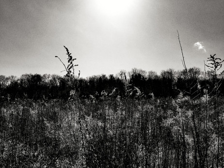 Shadow-breathe