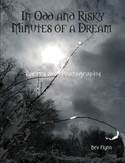 In Odd and Risky Minutes of a Dream Book Release!!!