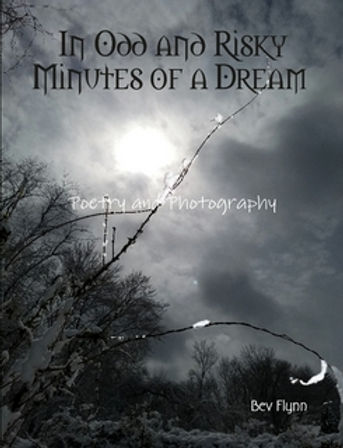 In Odd and Risky Minutes of a Dream Thum