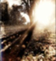 14-11-18-1405.jpg