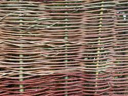 Deeside Willow - Fencing