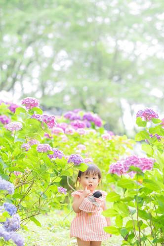 tokushigesama0200.jpg
